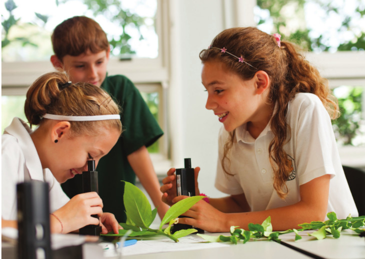Magnifying Microscopes in action at Coolbinia Primary School